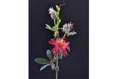 Passiflora Rosa 65 Cm
