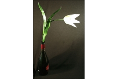Tulipano Gambo Lungo Da 70 Cm Diametro 9 Cm
