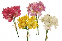 Bouquet Alstromeria Satin