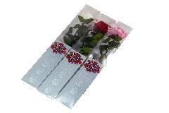 Rosa Naturale Stabilizzata Amorosa D.8xH.55 Cm  Premium C/gambo