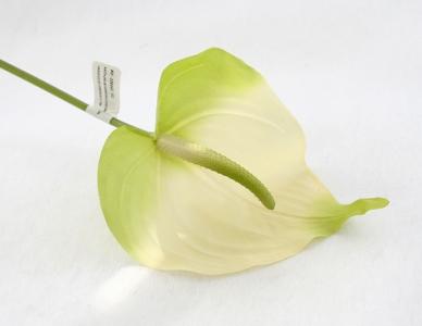 Anthurium Hawaiano Da 72 Cm In Lattice