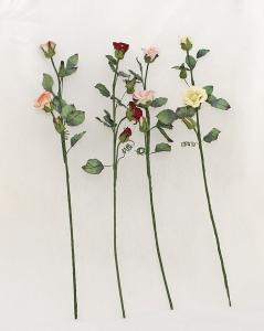 Rose-foglie Miste Scheletrine Fine Stock