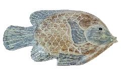 Pesce Legno Azzurro Grande 36 Cm Decoro Mare
