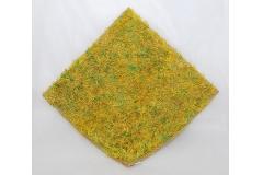 Zolla Di Prato Giallo E Verde 40x40 Cm