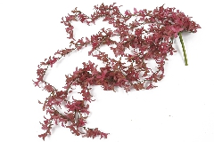 Cadente Succulenta Real Touch Rosa Cm 70 Fiore Artificiale