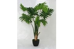 Pianta Di Philodendro Verde Con Vaso 110 Cm