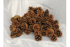 Pigne Silvestri Naturali Da 500 Grammi